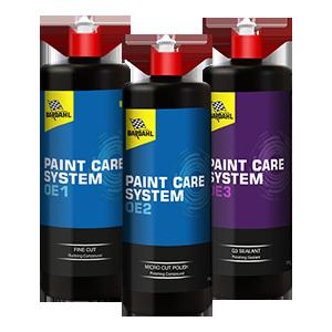 Paint Protection Treatments